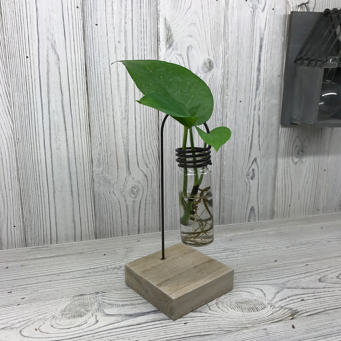 Hydroponic Home Decor - One Lab Pot Stand