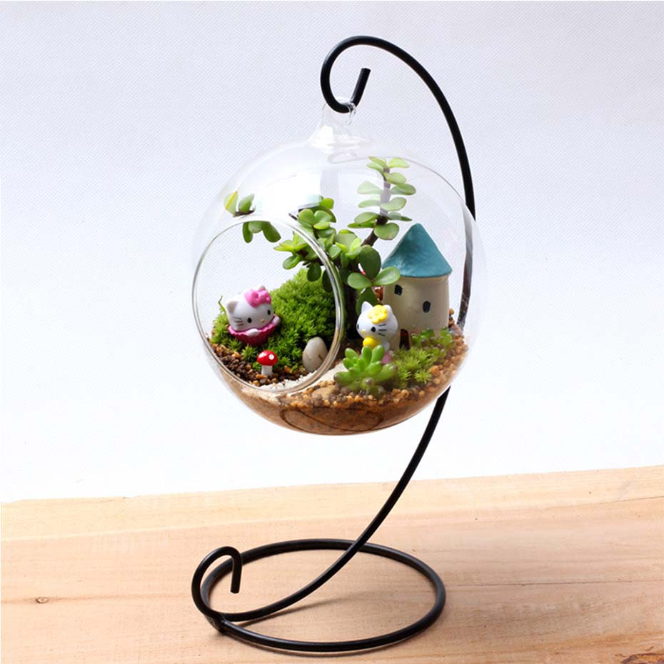 Decorative Glass Globe Hanging Air Plant Terrarium
