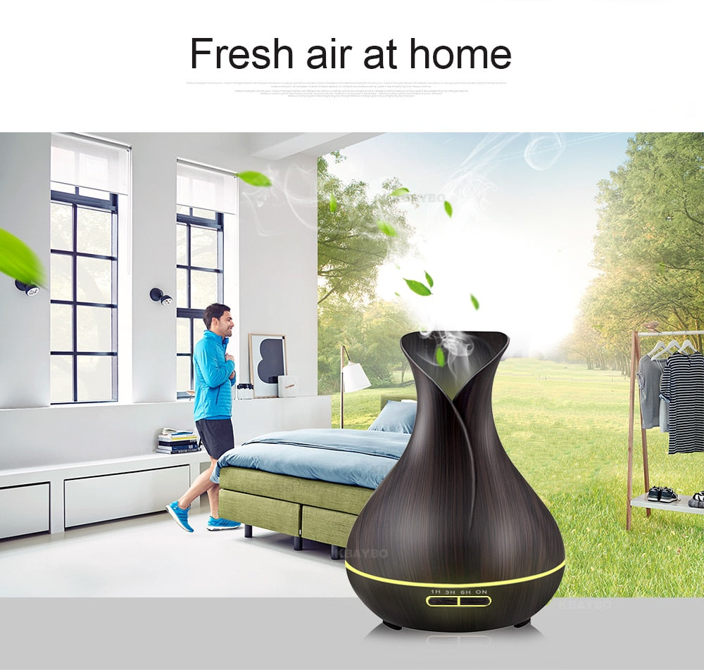 LED Light Essential Oil Diffuser/Humidifier