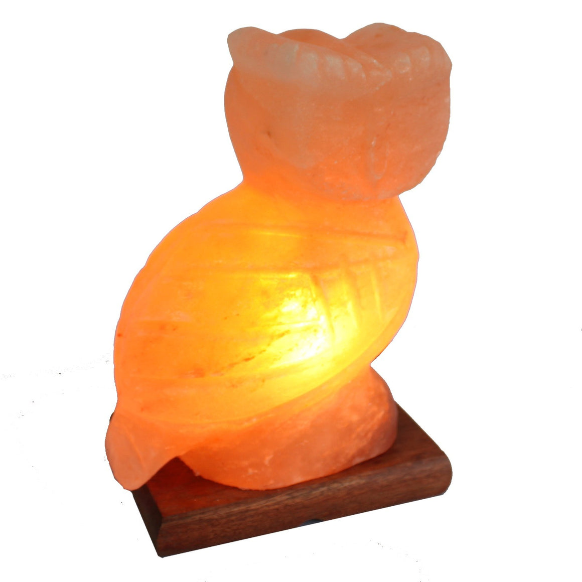 Himalayan Salt Lamp - Owl (Large)