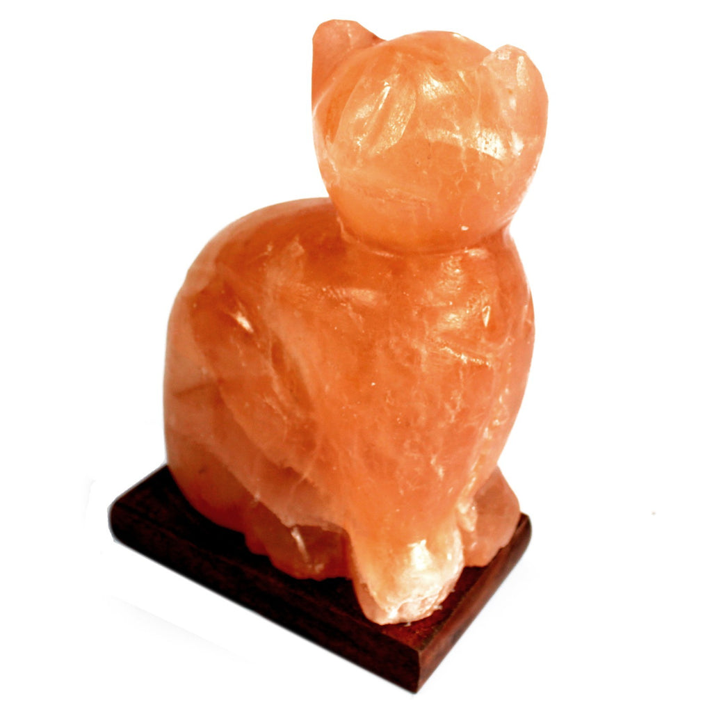 Animal Design Himalayan Salt Lamp - Cat (Large)