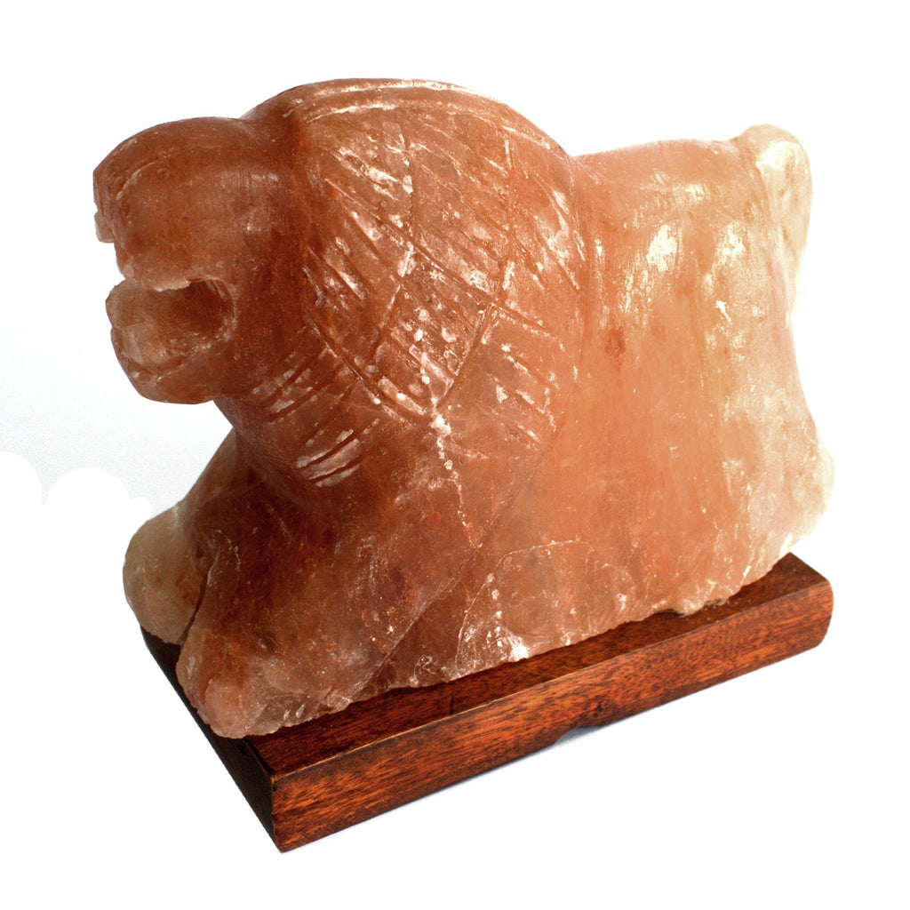 Animal Salt Lamp - Lion