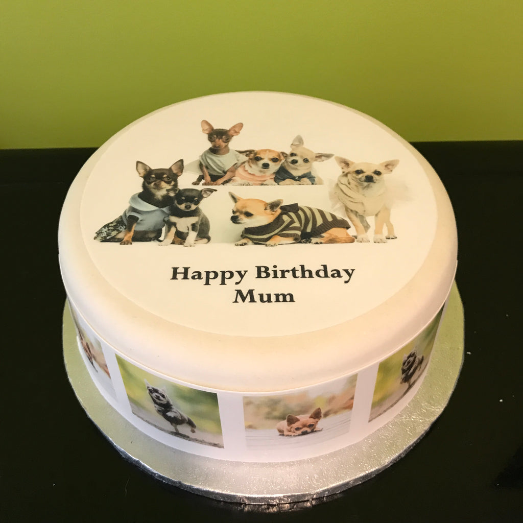 Chihuahua Dog Edible Icing Cake Topper Or Ribbon 03 The Caker Online