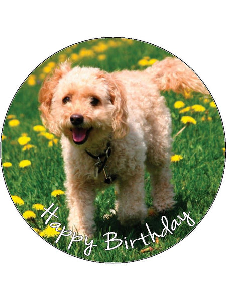 Cockapoo Dog Edible Icing Cake Topper 01