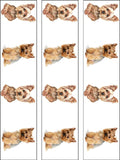 Yorkshire Terrier Dog Edible Icing Cake Topper 02