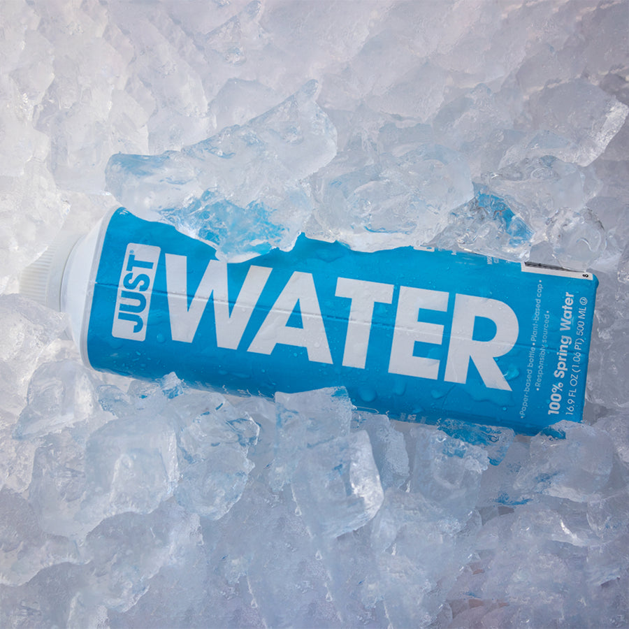 Spring Water <br> 16.9 fl oz | 24 Pack - JUST WATER