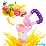 Baby Feeder Fruits Healthy Pacifier