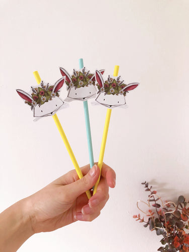 rabbit paper straws