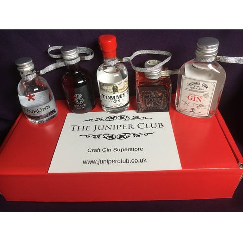 BESPOKE Christmas Gin Miniatures Box