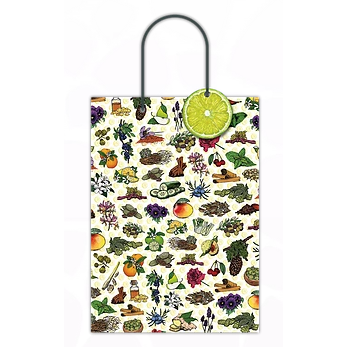Double Bottle Botanical Gift Bag