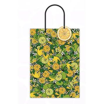 Double Bottle Lemon & Lime Gift Bag