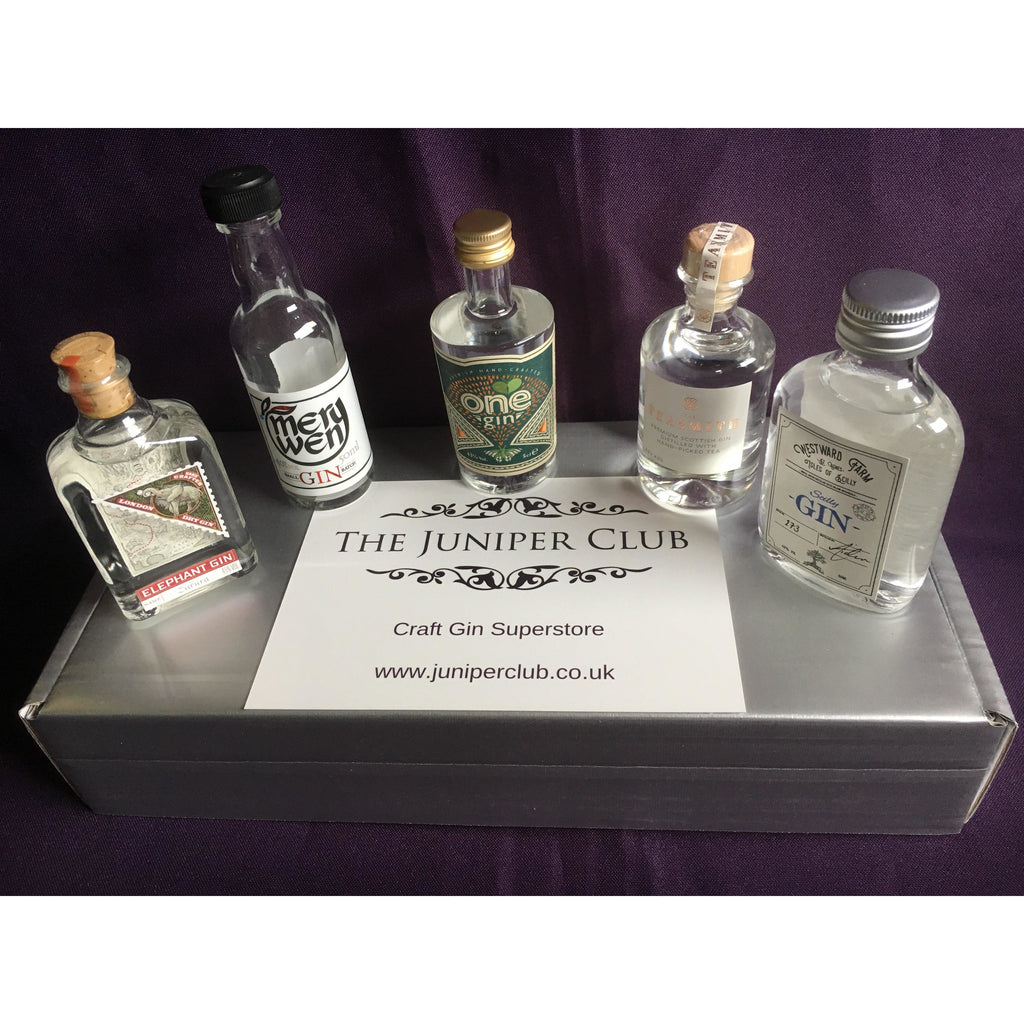 Silver Miniature Craft Gins Box