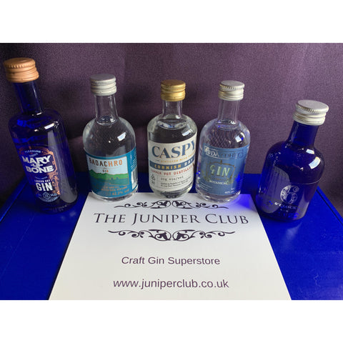 Blue Gin Miniatures Collection Box