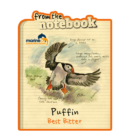 From the Notebook - Puffin