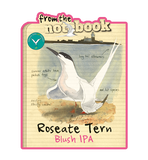 From the Notebook - Roseate Tern