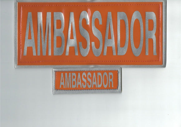 Encapsulated Reflective Ambassador Badge Set