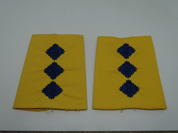 Yellow PSU Riot Officer Chief Inspector Rank Slides