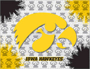 University of Iowa Canvas - Hawkeyes Logo