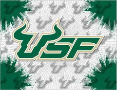 University of South Florida Canvas - Bulls Logo