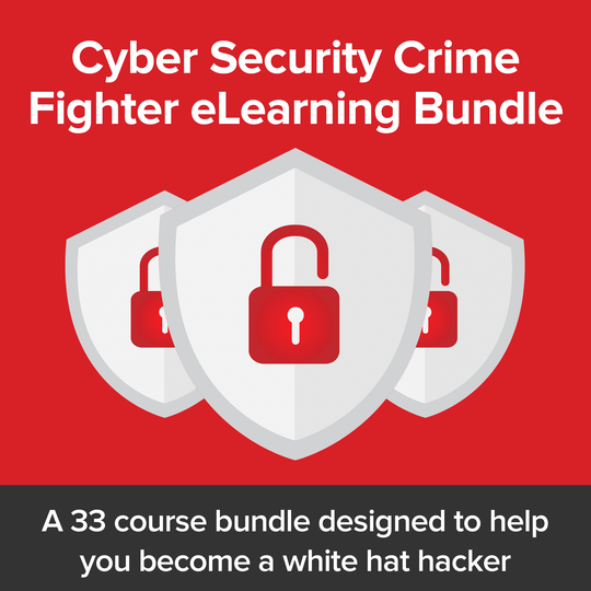 Cyber Security Crime Fighter eLearning Bundle - Theta Saber Mounts
