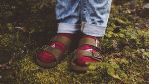 red-blue-marl-atacama-low-cut-eco-socks-in-birkenstocks
