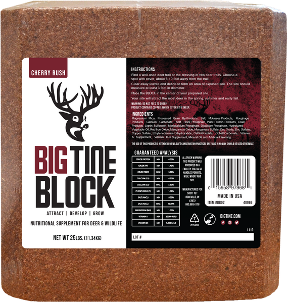 Big Tine Block - 25 LB