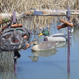 SRB Waterfowl Rest