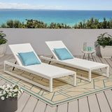 Outdoor Mesh Chaise Lounge (Set of 2) - NH749113