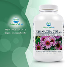 Load image into Gallery viewer, Nature's Lab Echinacea 760mg 100 capsules Ingredients