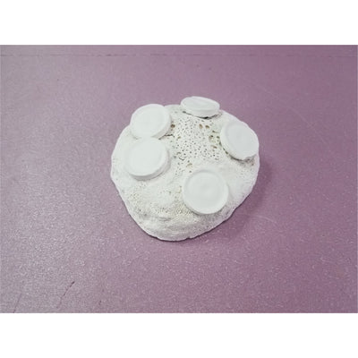 Ceramic Frag Rock 5 Plugs (Four Pack)