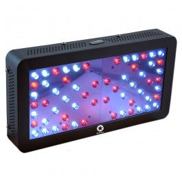 LED Black Star 240 UV2.0