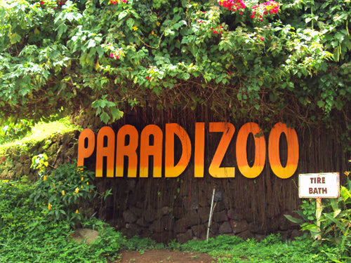 Paradizoo, Day Tour Access (Mendez, Cavite)