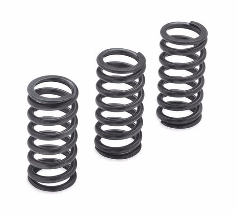 Milwaukee-Eight Engine Clutch Springs - 1200N
