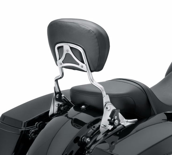Premium Detachable Backrest with Adjustable Recline, Chrome, Standard Height