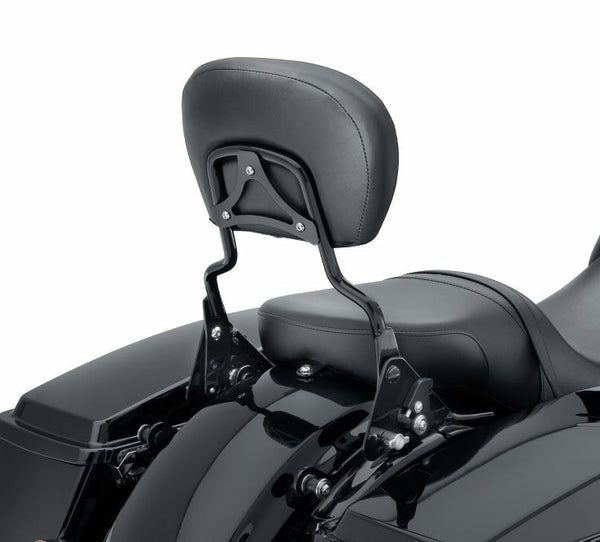 Premium Detachable Backrest with Adjustable Recline, Gloss Black, Standard Height