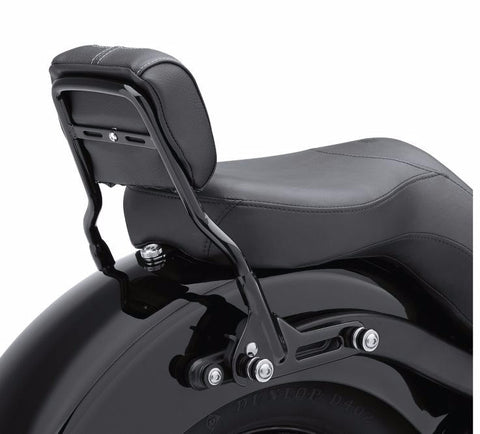 One-Piece Detachable Sissy Bar Upright Short Gloss Black