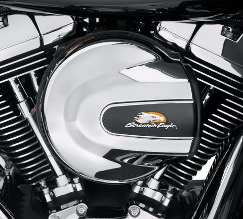 Screamin' Eagle Air Cleaner Insert