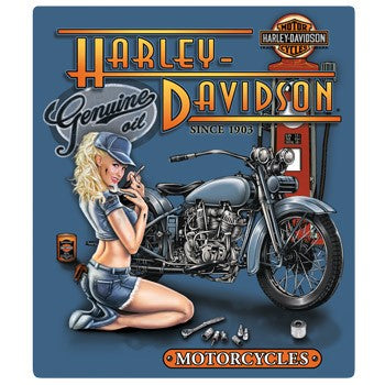 Harley-Davidson Mechanic Babe Sign