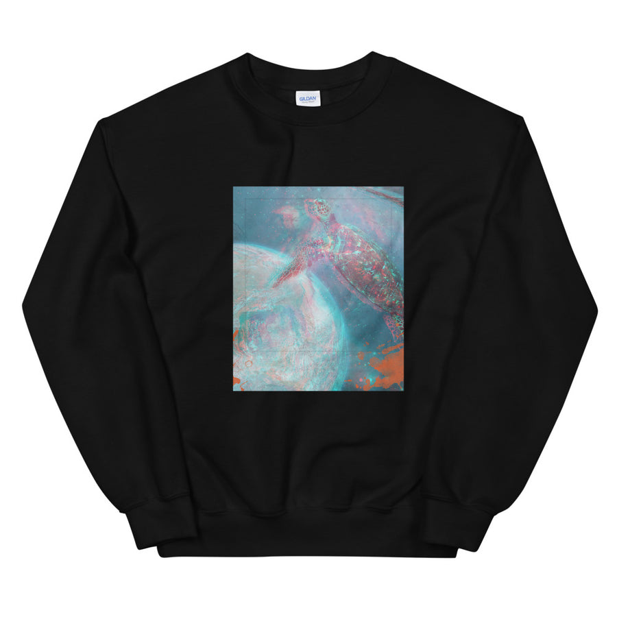 Aesthetic Women's Sweatshirt /Turtle