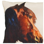 Shasta Horse Printed Pillow