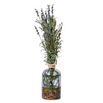 Lavender Bundle in Glass Jar