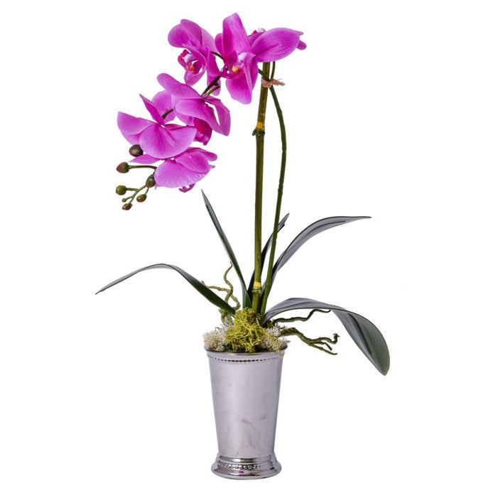 Purple Orchid in Silver Mint Julep Vase