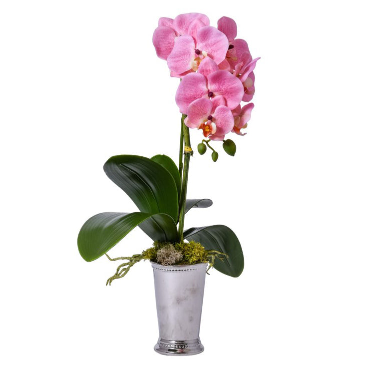 Pink Orchid in Silver Mint Julep Vase