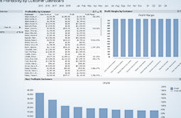 QuickBooks Enterprise Advanced Reporting Sales Profitability by Customer Dashboard