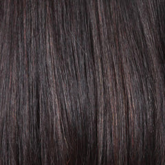 House Blend | Heat Friendly Synthetic Wig (Lace Front Traditional Cap)