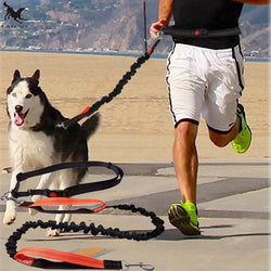 Waist rope with elastic dog running leash. - LUX DIRECT