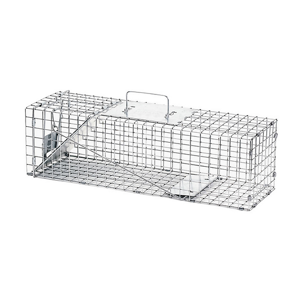 Raccoon & Groundhog Trap