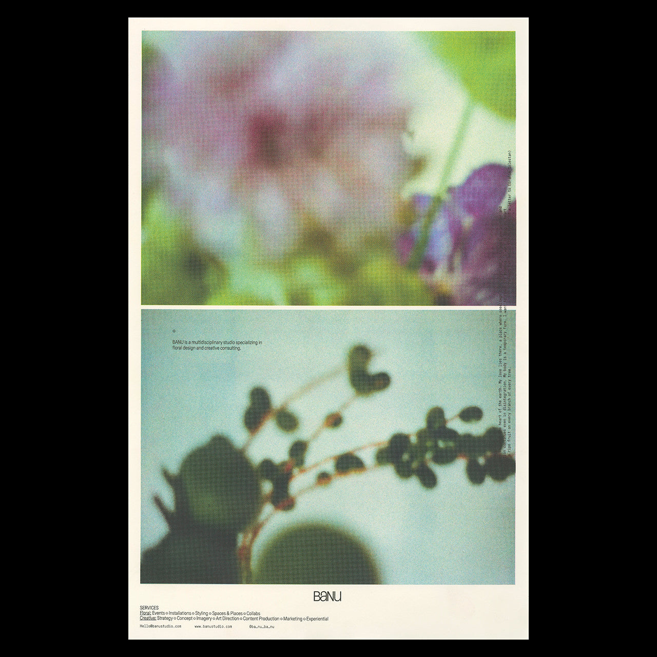 Poster print for Banu Studio featuring blurry artistic photography of flowers
