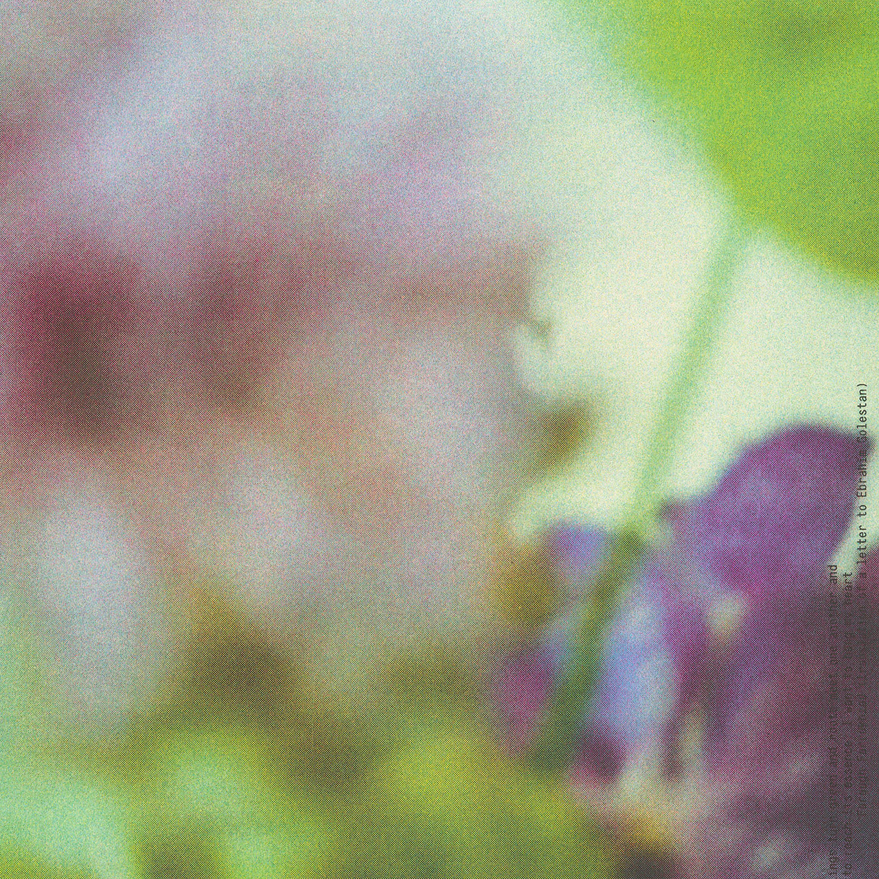 Up close detail of poster print for Banu Studio featuring blurry artistic photography of flowers