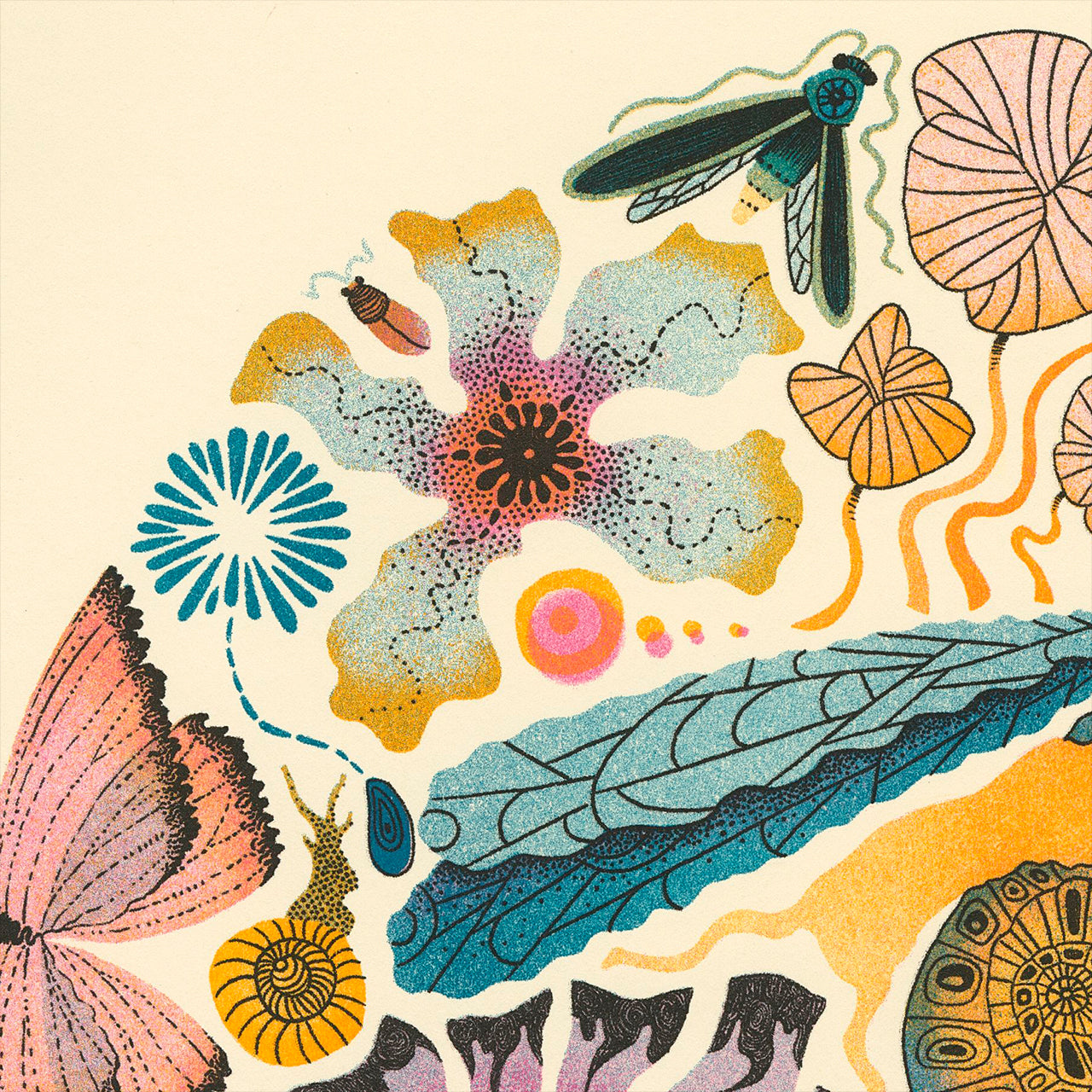 Close up detail of insect world print